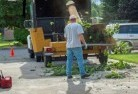 Acheron Tree cutting services 13